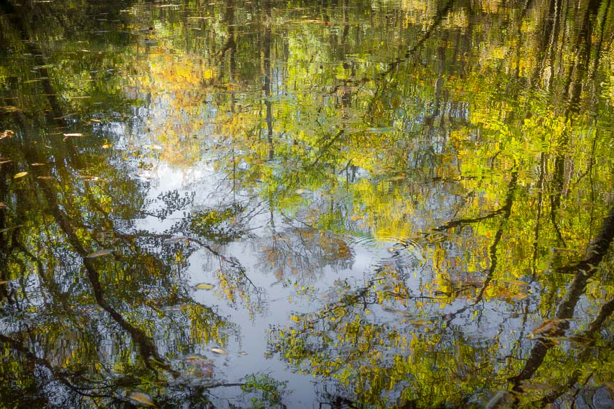 Autumn Reflections on Durbin Creek