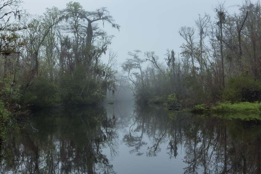 Early Dawn - Thomas Creek