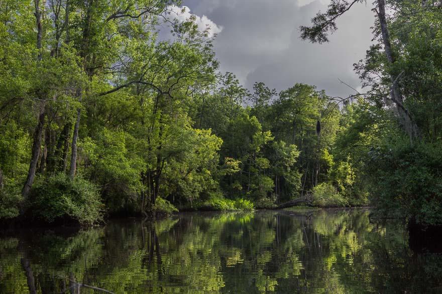 Approaching rain - Lofton Creek