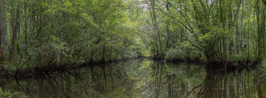 Upstream - Lofton Creek
